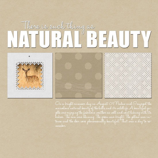 Natural Beauty Layout