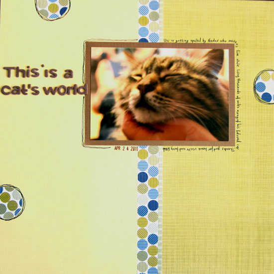 this is a cat's world layout